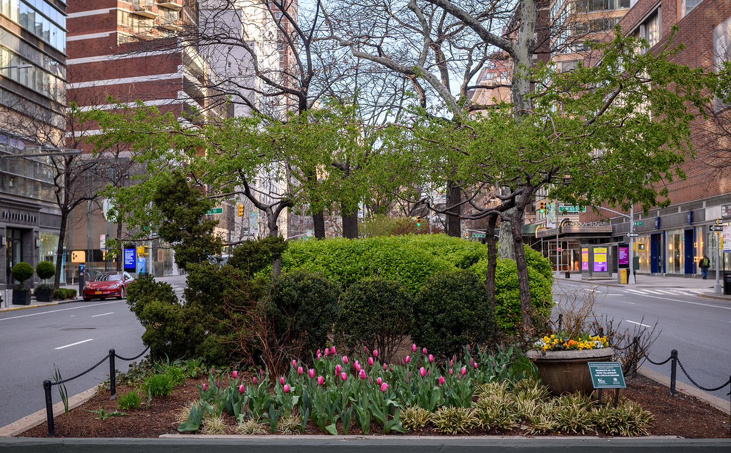 the Broadway Mall end bed at 66th street in Lincoln Square with pink tulips and other spring flowers